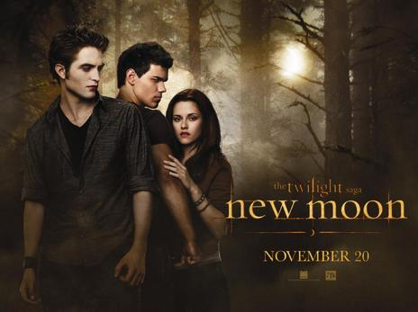 Plot summary of twilight new moon
