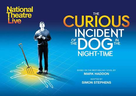 Introduction & Overview of The Curious Incident of the Dog in the Night-Time