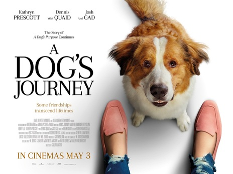 Film picture: A Dog's Journey