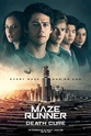 3D Maze Runner: The Death Cure